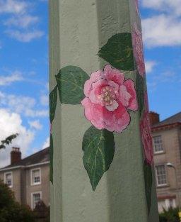 Camellia x williamsii Mildred Veitch