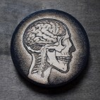 Anatomy of the Head - Wood Coaster