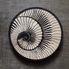 Spiral Shell - Wood Coaster