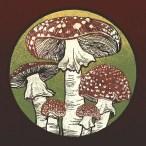 Fly Agaric Mushrooms, Amanita Muscaria - Digital Illustration