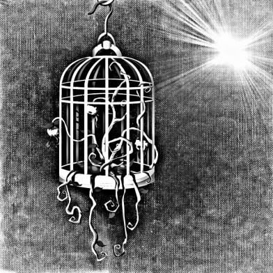 bird-cage-687694_960_720