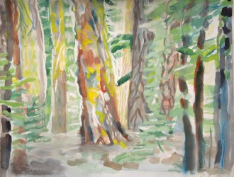 trees study gouache and chalk pastel on paper September 2013