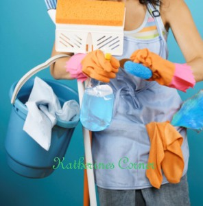 cleaning-product-reviews-katherines corner