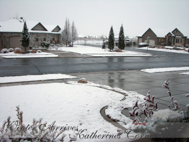 winter arrives katherines corner