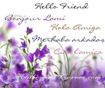 hello friend in many languages Katherines Corner