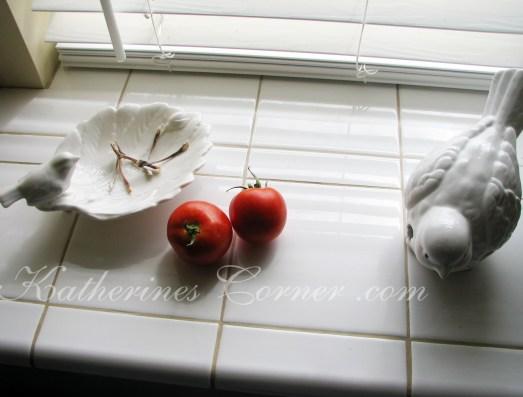tomatoes ripen on the windowsill
