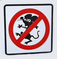 no mice allowed