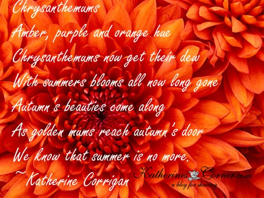 Chrysanthemum poem
