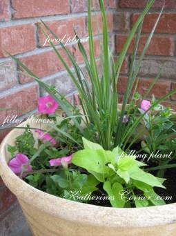container gardening basics katherines corner