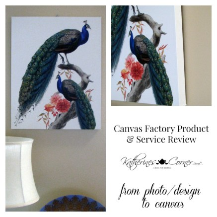 canvas factory product and service review