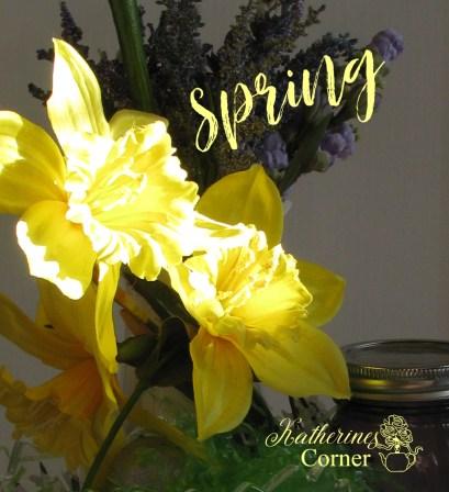 spring daffodils katherines corner