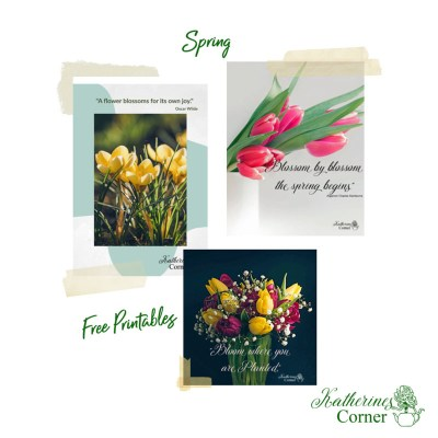 spring flowers spring quotes