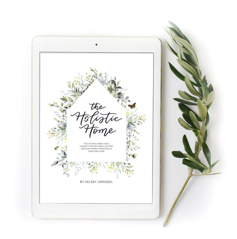 the holistic home on ipad