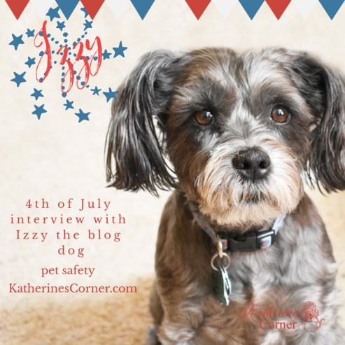 4th of July interview with Izzy the blog dog