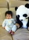 Hi Panda!