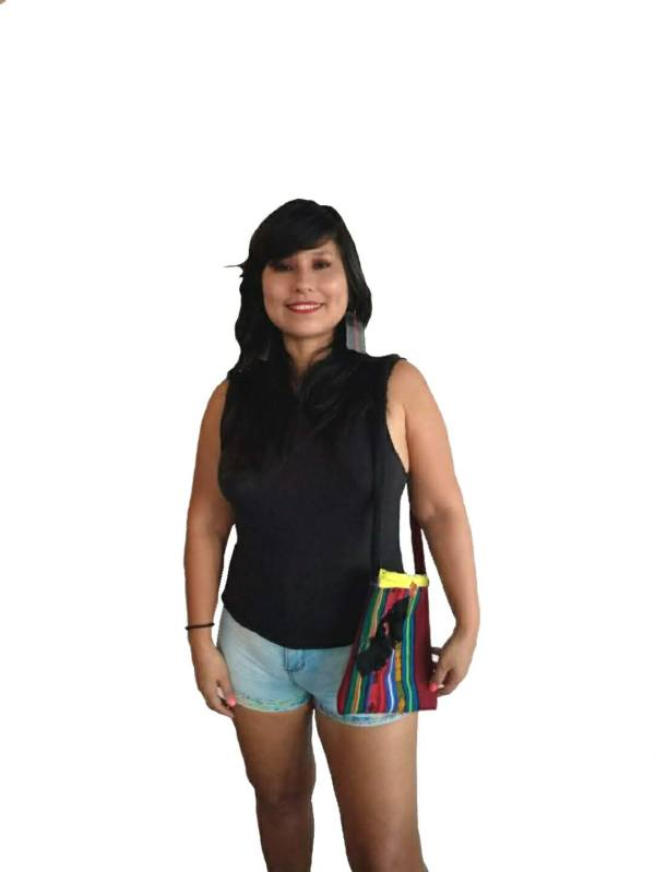 Bolso Andes