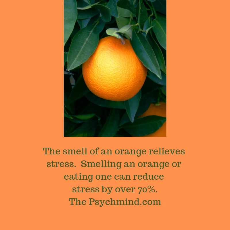 The smell of an orange relieves stress. Smelling and orange or eating one can reduce stress by over 70%. The Psychmind.com-2