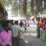 Shri Khodiar Temple Rajpara Sihor Bhavnagar