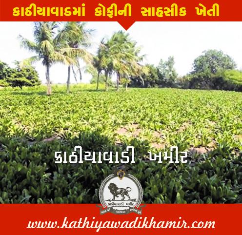 Coffee Farm Kutiyana
