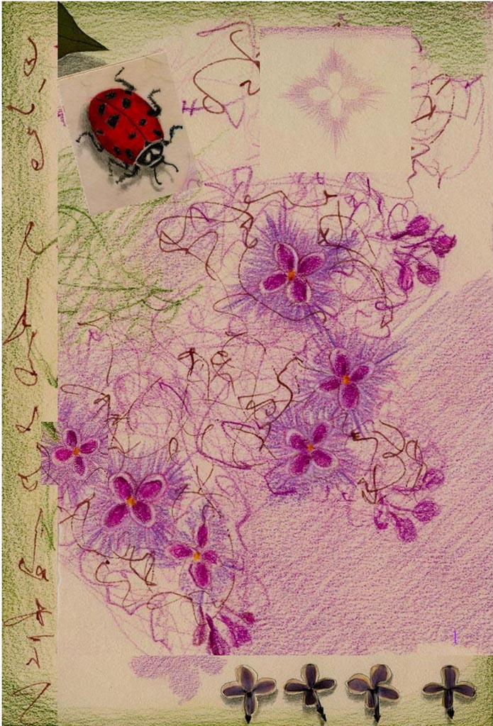 """""""Lilac and Ladybug"""", drawing by Kathleen O'Brien"""