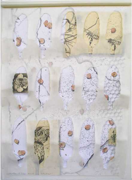 Pollinators 1, collaged drawing, Kathleen O'Brien