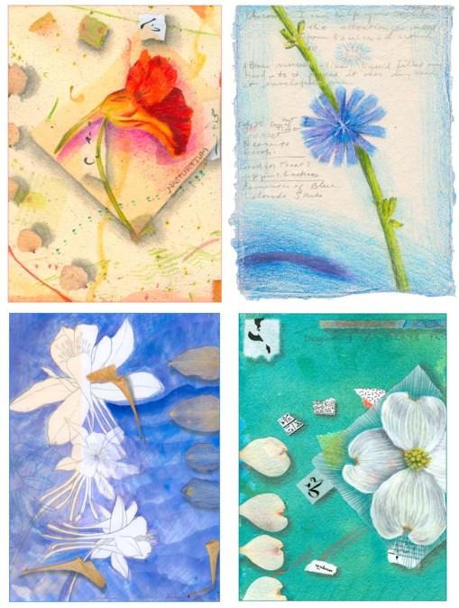 Kathleen O'Brien, Flower Card set 4