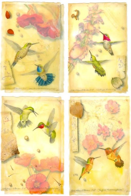 Kathleen O'Brien, Hummingbird Card Set