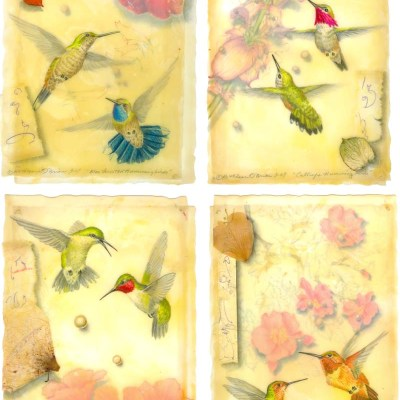 Kathleen O'Brien, Hummingbird Card Set