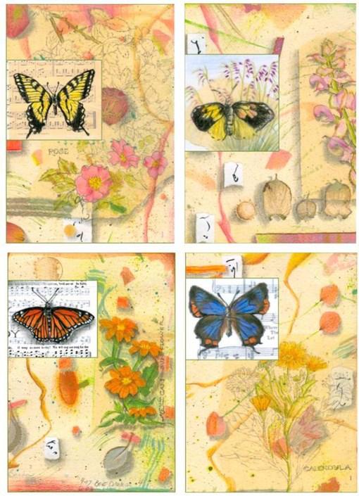 Butterflies Card Set 1