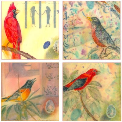 Nature Selection Card Set 6