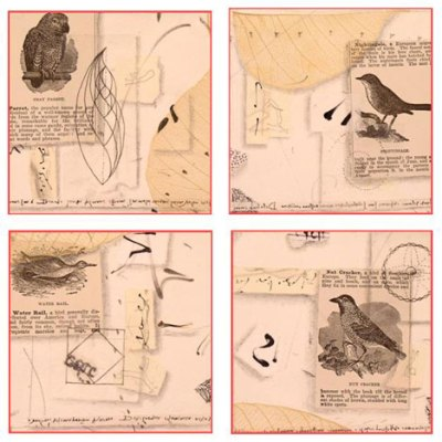 Homage to Birds Card Set Kathleen O'Brien