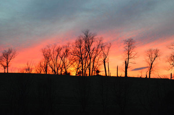 Solstice Sunset at Sunwise Farm and Sanctuary, Greg Orth