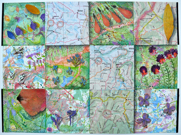 """""""Maps to Art Farms"""", 9x12"""", watercolor, drawing, petals, collage by Kathleen O'Brien"""