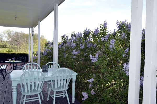 Lilacs Fest 2017, west porch at Sunwise Farm and Sanctuary