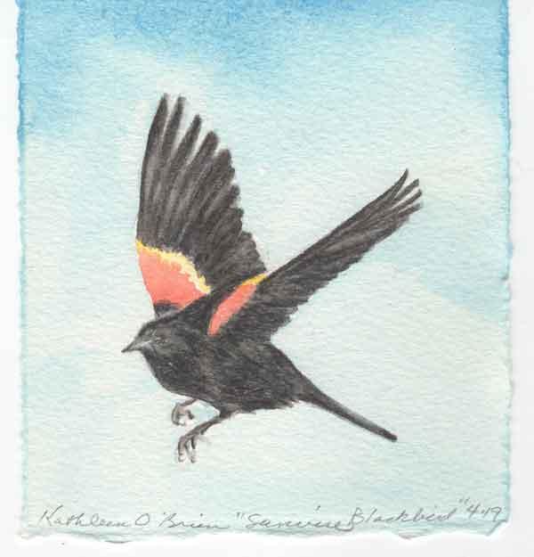 "© Kathleen O'Brien, ""Sunwise Blackbird"", gouache, 2019"