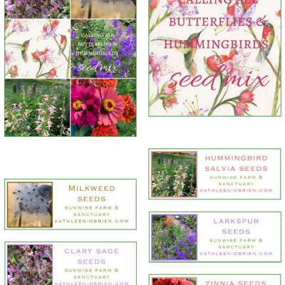 Garden Card set 3, Calling all Butterflies & Hummingbirds