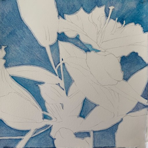 "©Kathleen O'Brien, 12 Madonna Lilies12, 8x8"""