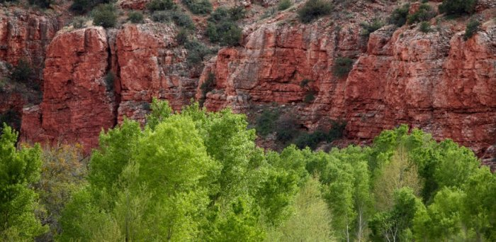 Sedona, Verde Canyon