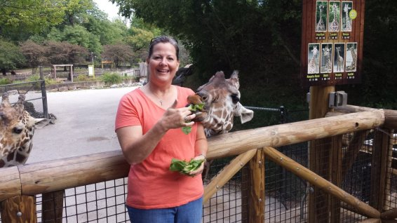 Wendy is a sweet Giraffe