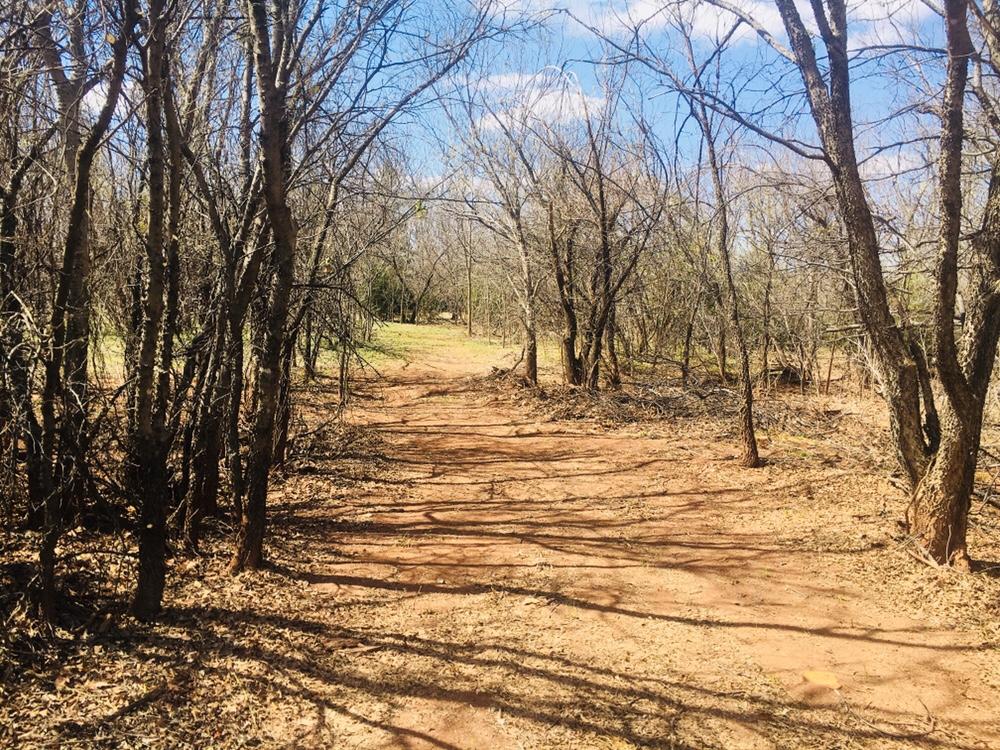 My new path across the creek.