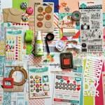 January 2015 Noel Mignon Scrapbook Kit