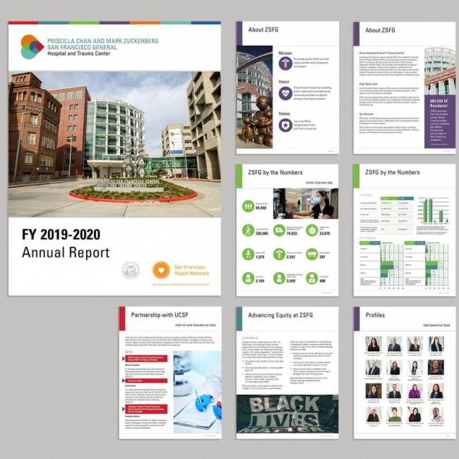 ZSFG Annual Report Pages