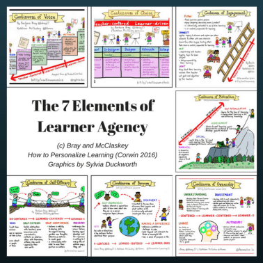 seven elements of learner agency