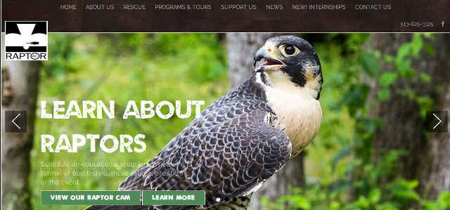 picture of Raptor Inc website