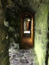 Inside Trim Castle
