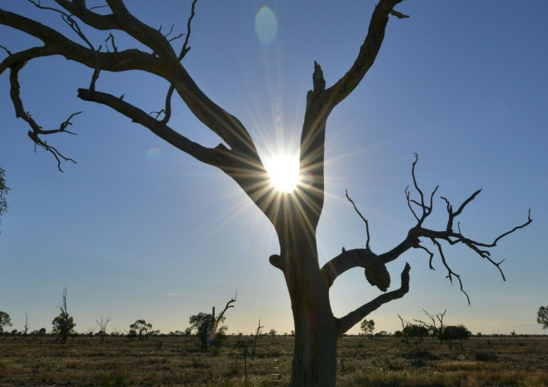 Was The State's 10th-Warmest Year On Record