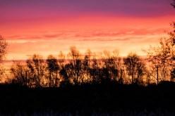 Sonnenaufgang Lehrte