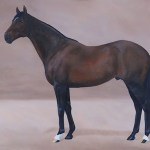 High Chaparral, stallion, Coolmore,horse art, Kathrin Guenther,