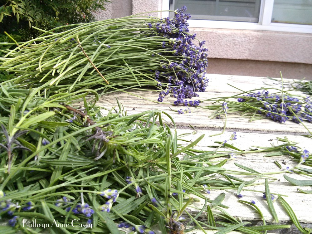 bunches of lavender on a picnic table