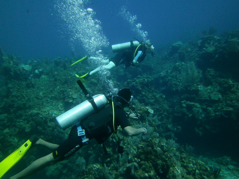 Learning to scuba dive with TGI in Roatan, photo by Mike Pelosi